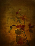 Flowers in velvet texture. Royalty Free Stock Photos