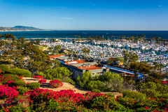 Flowers and view of the harbor from Heritage Park in Dana Point  Stock Image