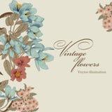 Flowers. Vintage postcard. Vector illustration. Flowers. Vintage vector illustration. Classic card. Botany Royalty Free Stock Image