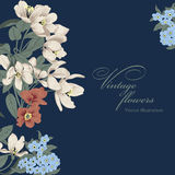 Flowers. Vintage postcard. Vector illustration. Flowers. Vintage vector illustration. Classic card. Botany Royalty Free Stock Images