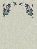 Flowers violets stock illustration