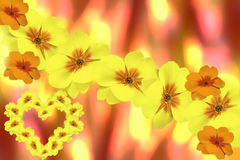 Flowers violets yellow.  blurry yellow-red background. Card for Valentine`s Day.  floral collage. flower Stock Photo