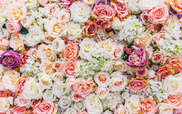 Flowers wall background with amazing red and white roses, Wedding decoration, hand made Royalty Free Stock Images