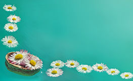Flowers in walnut shell floats on the water Stock Photo