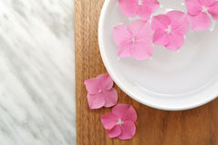 Flowers in a water bowl for aromatherapy on a wooden background. Flowers in a water bowl for aromatheraphy and spa Stock Photography