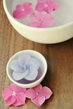 Flowers in a water bowl with a candle for aromatherapy. Flowers in a water bowl with a candle and a wooden pestle for aromatheraphy and spa Royalty Free Stock Photo