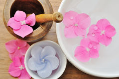 Flowers in a water bowl with a candle. And a wooden pestle Royalty Free Stock Images