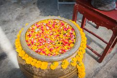 Flowers in the water bowl with the pouring Buddha On Songkran fe. Stival in Thailand stock photography
