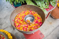 Flowers in the water bowl with the pouring Buddha On Songkran fe. Stival in Thailand stock photos