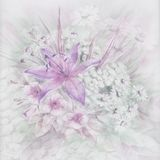Flowers, watercolor Royalty Free Stock Images