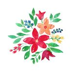 Flowers watercolor  Boho illustration. Cute, Floral background. Birthday card or wedding invitation. Hand-drawn
