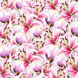 Flowers. Watercolor callas and lilies. Floral background. Flower pattern. royalty free stock image