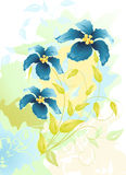 Flowers watercolor drawing Royalty Free Stock Photography