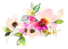 Free Flowers Watercolor Illustration. Royalty Free Stock Photo - 67139015
