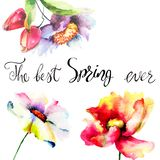 Flowers watercolor illustration with title the best spring ever. Watercolor illustration, Template for greeting card with calligraphy Royalty Free Stock Images