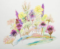 Flowers, watercolor painting Stock Photo