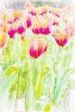Flowers watercolor . Pastel colors. Spring.