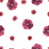 Flowers watercolor pattern Stock Image