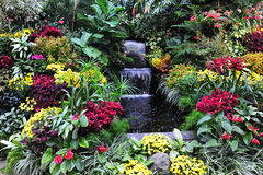 Flowers and waterfall Stock Image