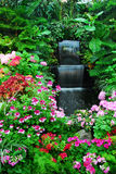 Flowers, waterfall in garden Royalty Free Stock Photos