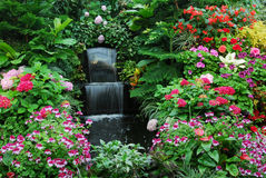 Flowers and waterfall garden Royalty Free Stock Photo