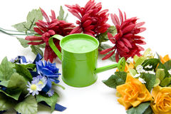 Flowers with watering can Royalty Free Stock Image