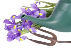 Flowers, watering can & fork Royalty Free Stock Photos