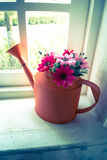 Flowers in watering can in the window Royalty Free Stock Photography