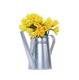 Flowers In Watering Can Royalty Free Stock Photos
