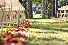 Flowers In A Wedding Aisle. Flowers lining the ground on the edges of an outdoor wedding aisle, next to seating. Flowers are at eye level to viewer royalty free stock photography