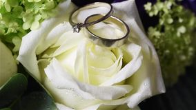 Flowers with wedding rings stock video