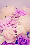 Flowers with wedding rings Stock Photography