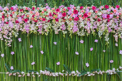 Flowers wedding scene. Beautiful flowers background for wedding scene Royalty Free Stock Photos