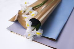 Flowers white irises in the soft golden floristic package. Bouquet packing royalty free stock photography