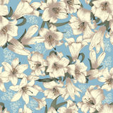 Flowers. White lilies . Vector seamless background . Vintage floral pattern . Botany Royalty Free Stock Image