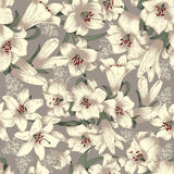 Flowers. White lilies . Vector seamless background . Vintage floral pattern . Botany Stock Photography