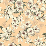 Flowers. White lilies. Vector seamless background. Vintage floral pattern. Botany Stock Photography