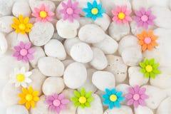 Flowers on white pebbles Stock Photo