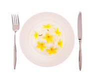 Flowers on white plate with fork and knife Royalty Free Stock Images