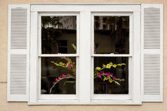 Flowers in a White Window Stock Photography
