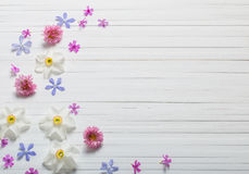Flowers on white wooden background Royalty Free Stock Photography