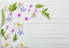 Flowers on white wooden background Stock Photography