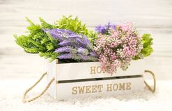 Flowers in a white wooden box. Interior decoration, interior composition. Flowers and branches in a wooden box. On a white wooden background royalty free stock photos