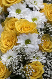 Flowers in white and yellow Stock Photography