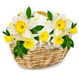 Flowers in the wicker basket Stock Photos