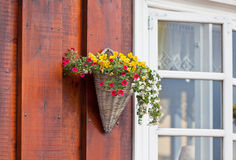 Flowers in wicker pot on a icelandic wooden house Stock Photo