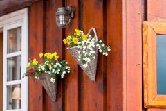 Flowers in wicker pots on a icelandic wooden house Stock Images