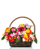 Flowers in the wicker Stock Photos