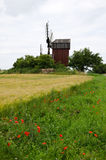 Flowers and windmill at roadside. Roadside with poppies and windmill Royalty Free Stock Photo