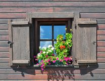 Flowers at window Stock Photo